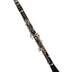 Swell Leonards Music Buffet Crampon E13 A Professional Clarinet Interior Design Ideas Gresisoteloinfo